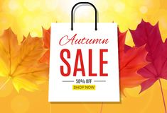 Autumn Leaves Sale Banner brillant Carte de remise d'affaires Illustration de vecteur illustration libre de droits
