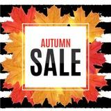 Autumn Leaves Sale Banner brillant Carte de remise d'affaires Illustration de vecteur Photographie stock libre de droits