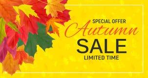 Autumn Leaves Sale Banner brillant Carte de remise d'affaires Illustration de vecteur illustration stock