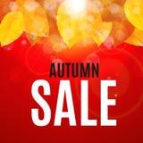 Autumn Leaves Sale Banner brillante Tarjeta del descuento del negocio Ilustración del vector Foto de archivo