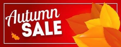 Autumn Leaves Sale Banner brillante Tarjeta del descuento del negocio Ilustración del vector Imagen de archivo
