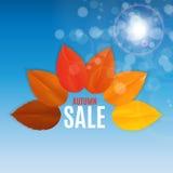Autumn Leaves Sale Banner brillante Tarjeta del descuento del negocio Ilustración del vector Fotografía de archivo libre de regalías