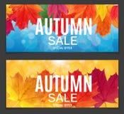 Autumn Leaves Sale Banner brillante Tarjeta del descuento del negocio Ilustración del vector Imagenes de archivo