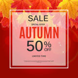 Autumn Leaves Sale Banner brillante Tarjeta del descuento del negocio Ilustración del vector Imágenes de archivo libres de regalías