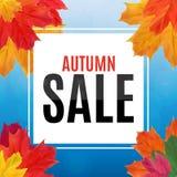 Autumn Leaves Sale Banner brillante Tarjeta del descuento del negocio Ilustración del vector Imagen de archivo libre de regalías