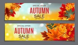 Autumn Leaves Sale Banner brillante Tarjeta del descuento del negocio Vector Imagen de archivo