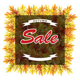 Autumn leaves sale banner Royalty Free Stock Photography