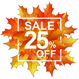 Autumn leaves sale 25 in frame Stock Photos