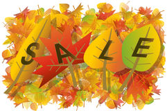 Autumn leaves sale illustration. The Word SALE made of colorful autumn leaves on white background illustration Royalty Free Stock Photos