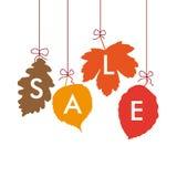 4 Autumn Leaves Sale Stock Photo