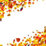 Autumn leaves scattered background. Oak, maple and rowan. Autumn leaves scattered background with oak, maple and rowan Stock Photo