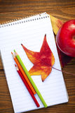 Autumn leaves and schools Stock Image