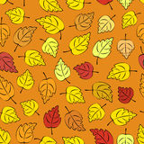 Autumn Leaves Seamless Royalty Free Stock Photos