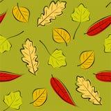 Autumn leaves seamless background. Stylized autumn leaves seamless pattern Stock Photos