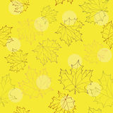 Autumn leaves seamless background Royalty Free Stock Photography