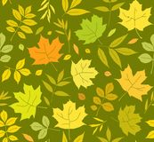 Autumn leaves seamless background, green, vector. Yellow, green and orange leaves of the trees on the green field. Vector color pattern. Nature, autumn Stock Photo
