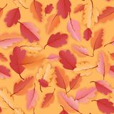 Autumn Leaves Seamless Background, modèle de calibre d'automne avec de belles feuilles illustration libre de droits