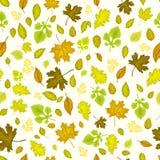 Autumn leaves seamless background. Autumn leaves seamless vector background vector illustration