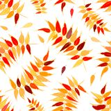 Autumn leaves seamless background for your design Royalty Free Stock Photos