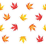 Autumn leaves seamless pattern Stock Photos