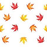 Autumn leaves seamless pattern. Autumn beautiful leaves seamless pattern Stock Photos