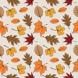Autumn leaves seamless pattern 02 Royalty Free Stock Images