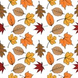 Autumn leaves seamless pattern 01. Autumn leaves seamless pattern vector illustration 01 Stock Images