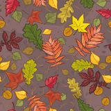 Autumn leaves seamless pattern backgroun Royalty Free Stock Photo