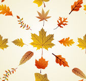 Autumn leaves seamless pattern background. EPS10 f Stock Photo