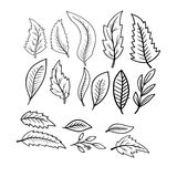 Autumn leaves seamless pattern black and white Royalty Free Stock Photo