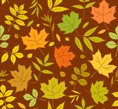 Autumn leaves, seamless pattern, brown, vector. Yellow, green and orange leaves on a brown field. Vector color pattern. Nature, autumn Stock Image