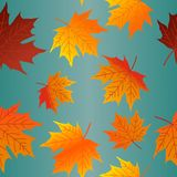 Autumn Leaves Seamless Pattern Fall Colorful Maple Leaves Repeat Pattern for Textile Design, Fabric Printing, Stationary, Packagin stock illustration