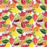 Autumn leaves seamless pattern. Flat style Stock Photography