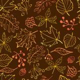 Autumn leaves seamless pattern Stock Image