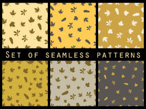Autumn leaves seamless pattern set. Autumn colors. Vector illustration. Stock Photography