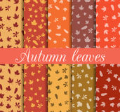 Autumn leaves seamless pattern set. For wallpaper, bed linen, tiles, fabrics, backgrounds. Stock Photography