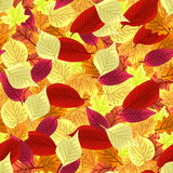 Autumn leaves seamless pattern. Vector background. Autumn colorful leaves seamless pattern. Vector background Stock Photography