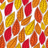 Autumn leaves seamless pattern, vector background. Autumn leaves seamless pattern, floral vector seamless background, hand drawn Stock Photography