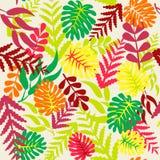 Autumn Leaves Seamless Pattern Stock Photos
