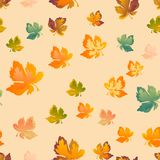 Autumn leaves seamless pattern, vector background. Red, yellow and green maple leaf, For the design of wallpaper, fabric. Autumn leaves, seamless pattern, vector Royalty Free Stock Images