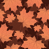 Autumn leaves, seamless pattern, vector background. Yellow orange maple leaf on a brown . For the design of wallpaper Royalty Free Stock Photography