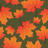 Autumn leaves, seamless pattern, vector background. Yellow orange maple leaf on a green . For the design of wallpaper Royalty Free Stock Photo