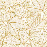 Autumn leaves seamless pattern. Stock Photos