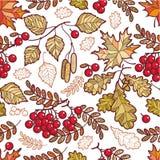 Autumn leaves. Seamless pattern. Stock Photos