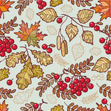 Autumn leaves.  Seamless pattern Stock Images