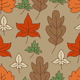 Autumn leaves seamless pattern. Vector illustration.  Royalty Free Stock Image
