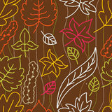 Autumn leaves seamless pattern. Vector illustration.  Royalty Free Stock Photography