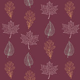 Autumn leaves seamless pattern. Vector illustration in eps8 format Royalty Free Stock Images