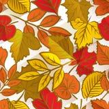 Autumn leaves seamless pattern Stock Photo