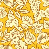 Autumn leaves seamless pattern Stock Images